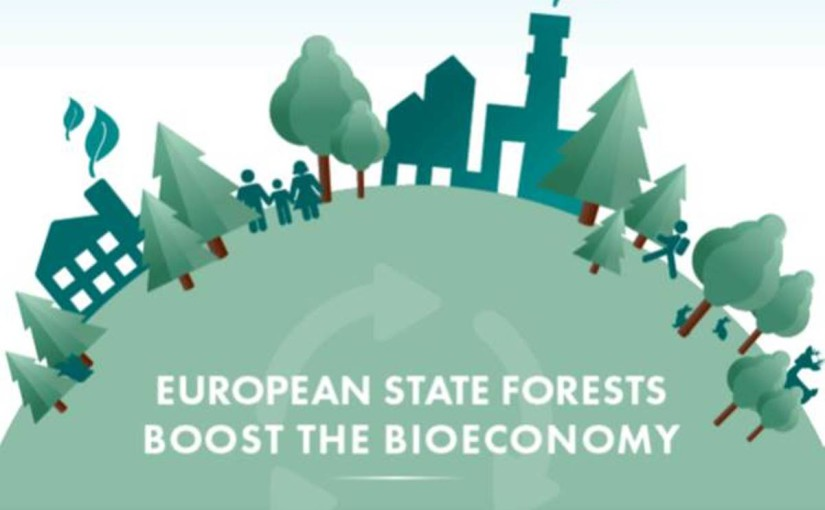 European State Forests Boost the Bioeconomy
