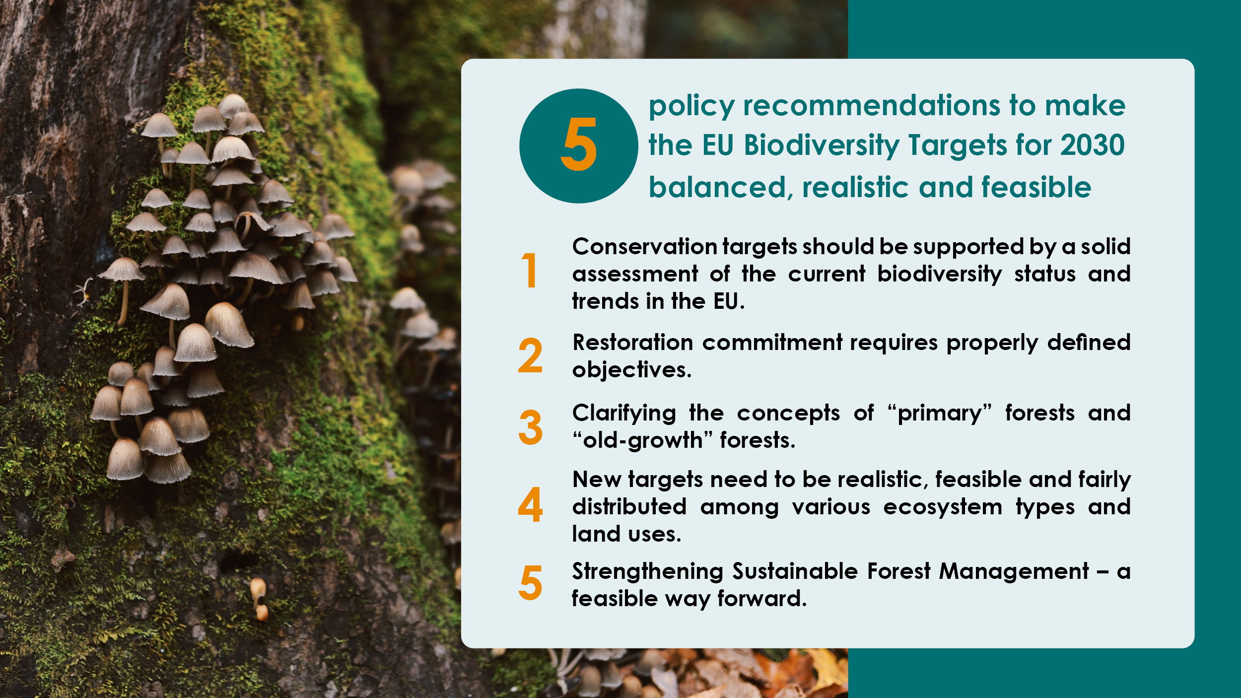 EU Commission plans green reset for nature, food and farming | WWF