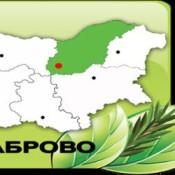 Logo_North_Central_State_Forest_Enterprise_Gabrovo