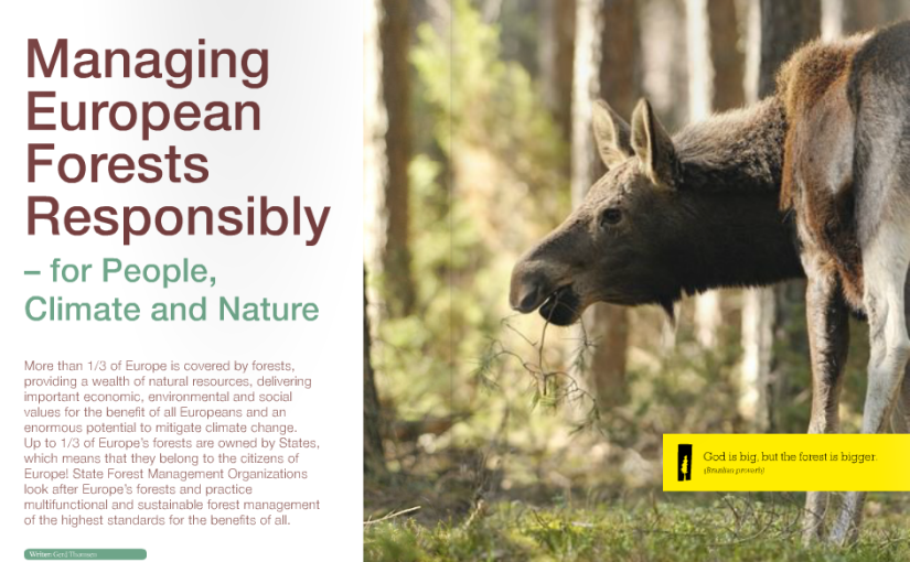 EUSTAFOR-publication: Managing European Forests Responsibly – for People, Climate and Nature