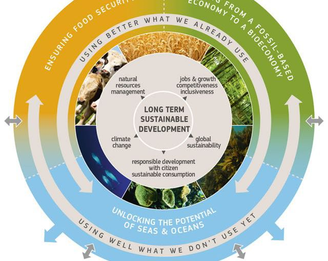 The Role of the Bioeconomy in the Circular Economy