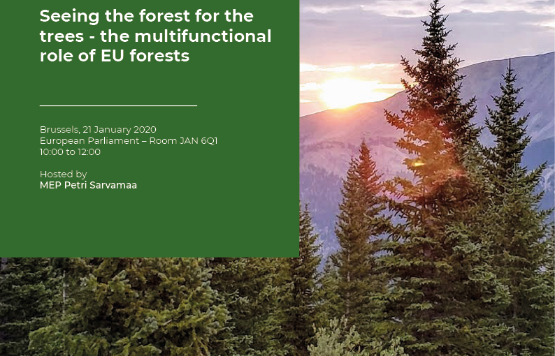 Multifunctional forests hold the key to reaching the EU's climate and biodiversity objectives