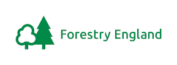 Forestry England appoints a new chief executive officer and celebrates 100 years of forestry