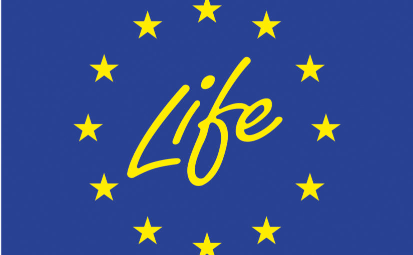 The European Commission released a new publication about the LIFE programme
