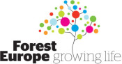Forest Europe discusses its future direction